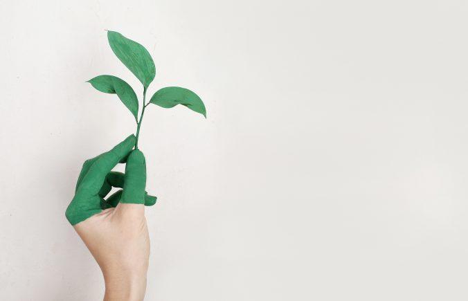ekologisk hudvård
